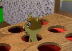 הכה בסנאי - Hit the Squirl