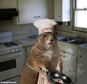 בישול ובישול