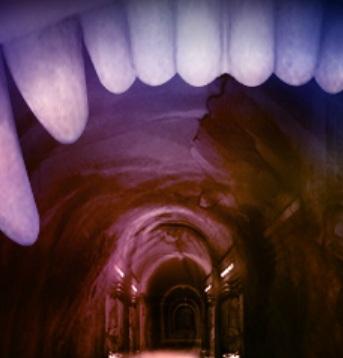 בריחה ממערת היהלומים