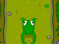 מרוץ הצפרדע