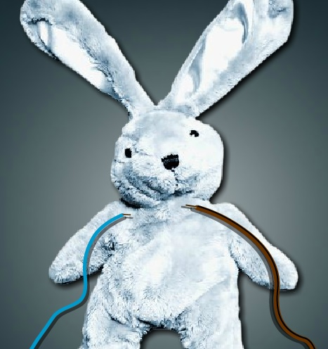 להציל את הארנב