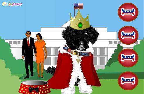 הלבשת הכלב של אובמה