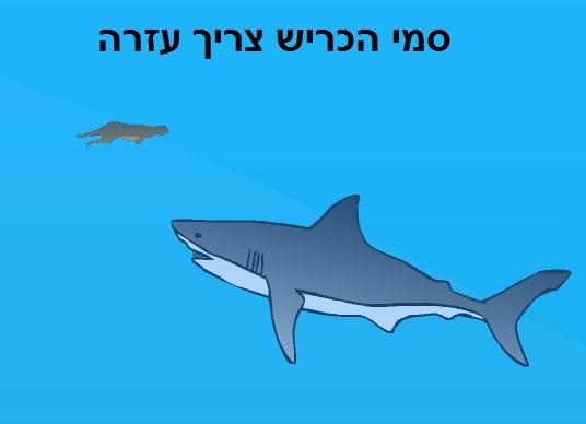 פתיון כרישים
