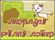הרפתקאות בממלכת החתולים