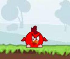 תרנגולים עצבניים 2.2
