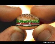 ההמבורגר הקטן בעולם