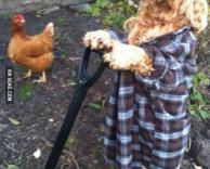 הכלב שלי חופר בורות בגינה