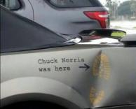 נוריס הזה, בכל מקום