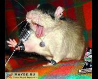 עכבר מטאליסט