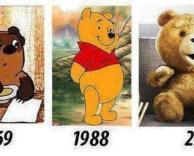 האבולוציה של הדובים