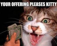אתה משחד את חתולי?