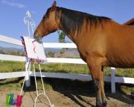 סוס מצייר