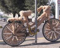אופניים פרוותיים