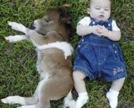 ילדה וחמור ישנים ביחד