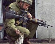 חייל וחתולה