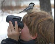 צופה בציפורים