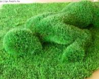דשא בצורת בנאדם
