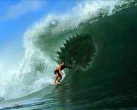 כריש בתוך גל