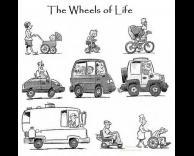 חיי גלגלים