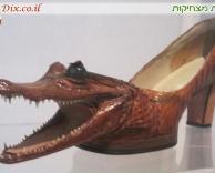 נעל מעור תנין