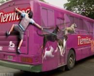 פרסומת אוטובוס