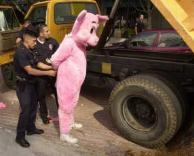פיגי נעצר