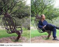 עץ מקורי