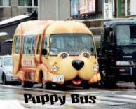אוטובוס חמוד
