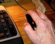 מנסה לתפוס את העכבר