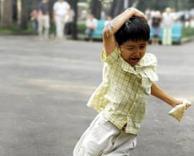 ילד מותקף על ידי יונה