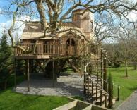 בית בתוך עץ?!