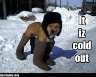 קר בחוץ