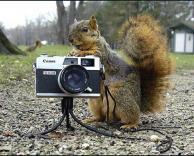 הצלם המפורסם