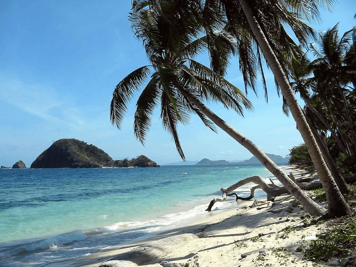 החוף החביב