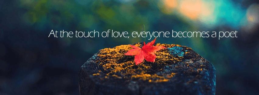 אהבה מגניב