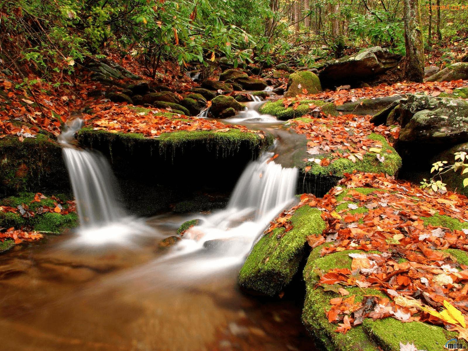 מפל טבעי